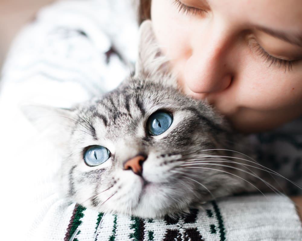 Resident holding and kissing her cat at Olympus Falcon Landing in Katy, Texas