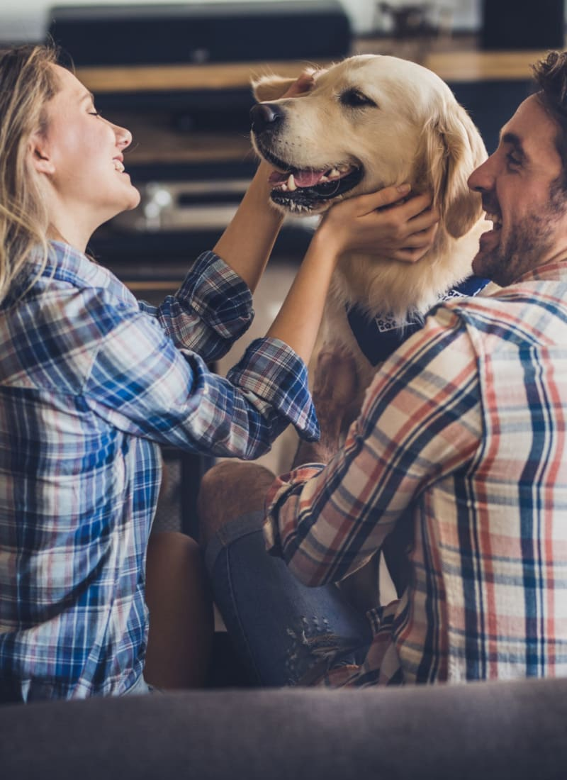 View our pet policy at Marquis at Silver Oaks in Grapevine, Texas