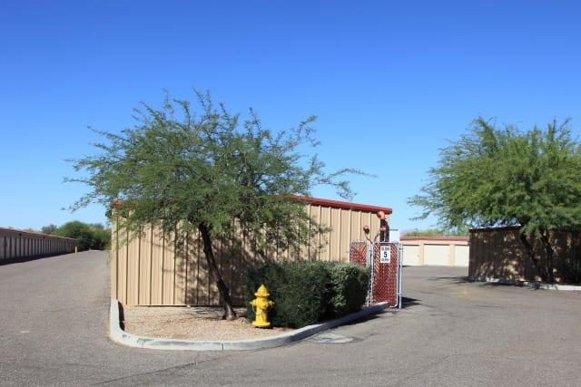 Tree lined units at Advantage Storage - Surprise in Surprise, Arizona