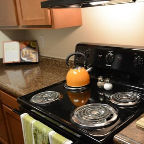 Fully equipped kitchen with black appliances at Lakeside Landing Apartments in Lakeside Park, Kentucky