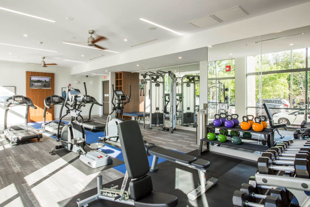 Fitness room with kettlebells, free weights, benches, and cardio machines at Marq Midtown 205 in Charlotte, North Carolina