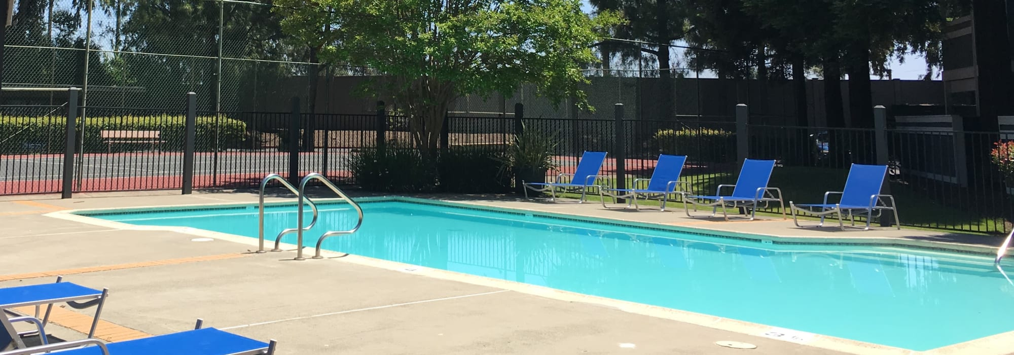 Pet friendly living at Avery Park Apartments in Fairfield, California