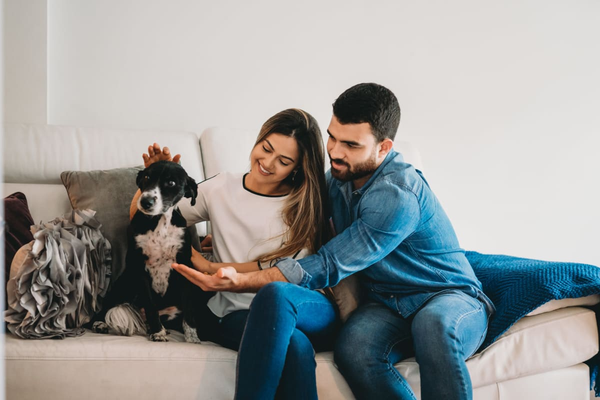 Couple petting their dog at The Ridge in Troy, New York
