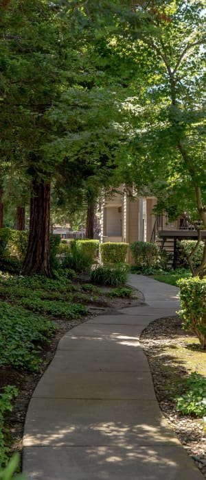 Highly vegetative landscape for your furbaby at Shaliko in Rocklin, California