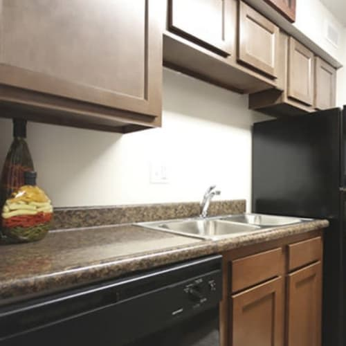 Kitchen with dishwasher and stainless steel double sink at Lakeside Landing Apartments in Lakeside Park, Kentucky