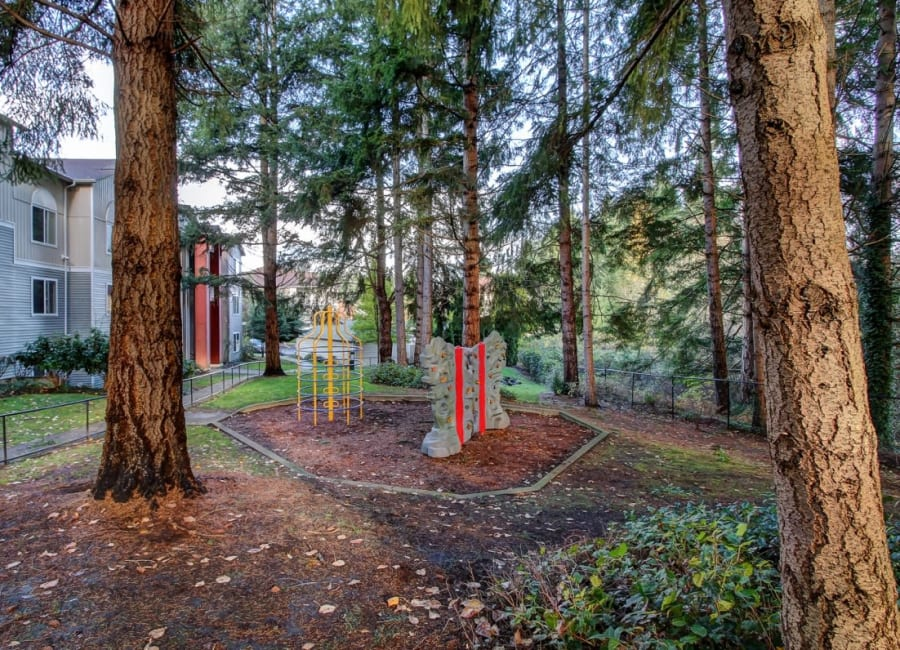 Children's playground with a jungle gym and rock wall at The Dakota Apartments in Lacey, Washington