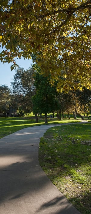 Large grassy lawn for playing fetch with your furbaby at Shore Park at Riverlake in Sacramento, California