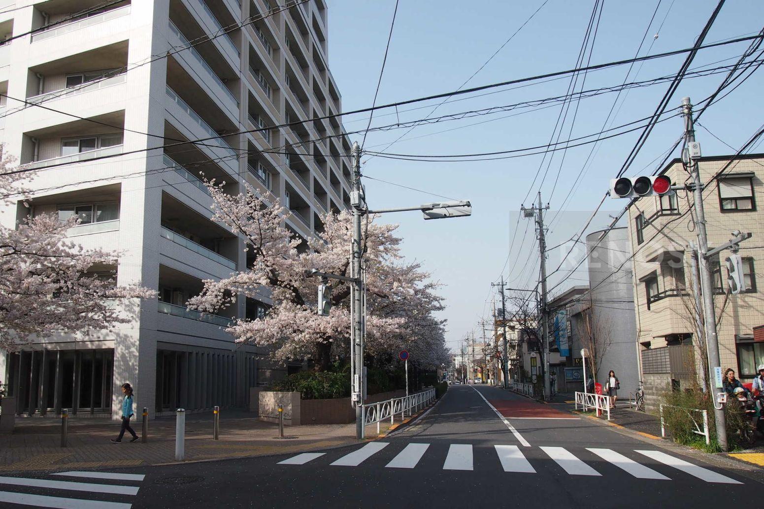 ザ目黒桜レジデンス