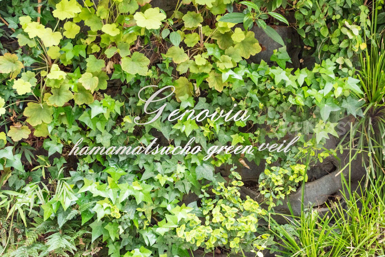 GENOVIA浜松町green veil