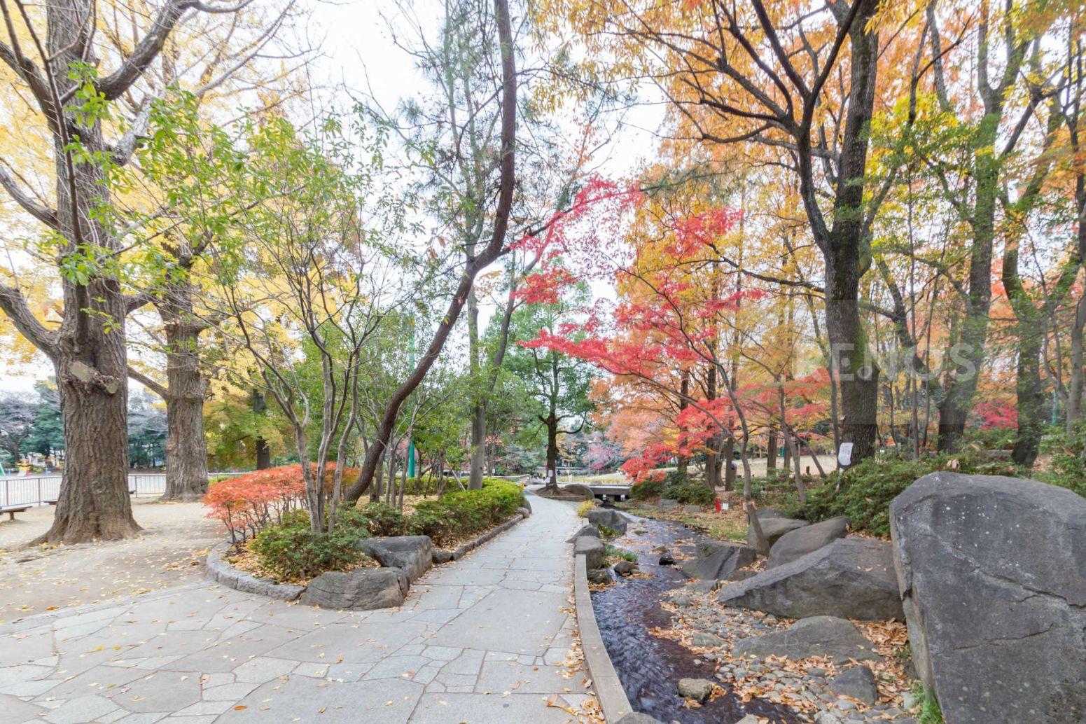 東高円寺アムフラット