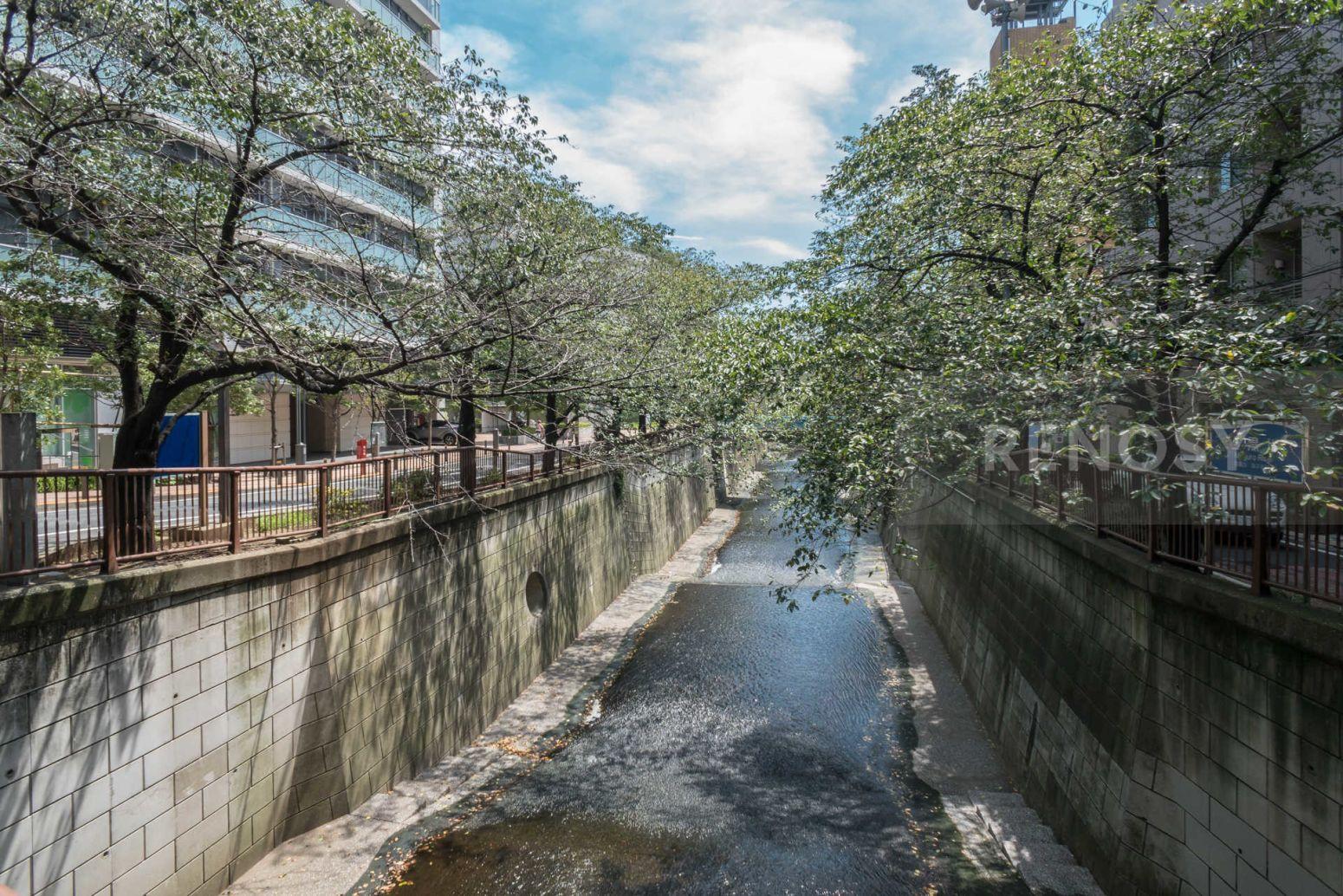 ステージファースト池尻大橋