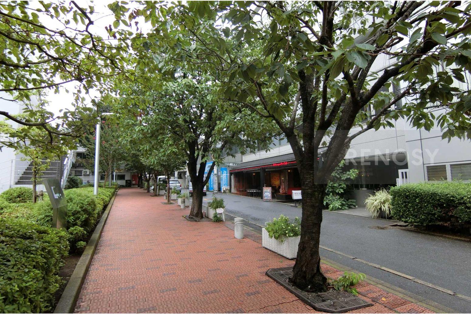 CASABELLINI桜丘町