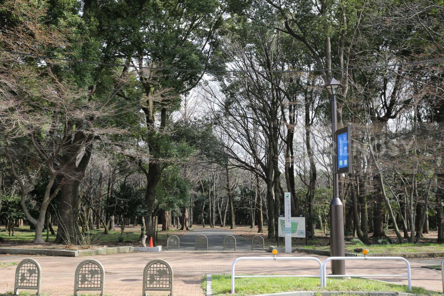 小田急コアロード砧公園