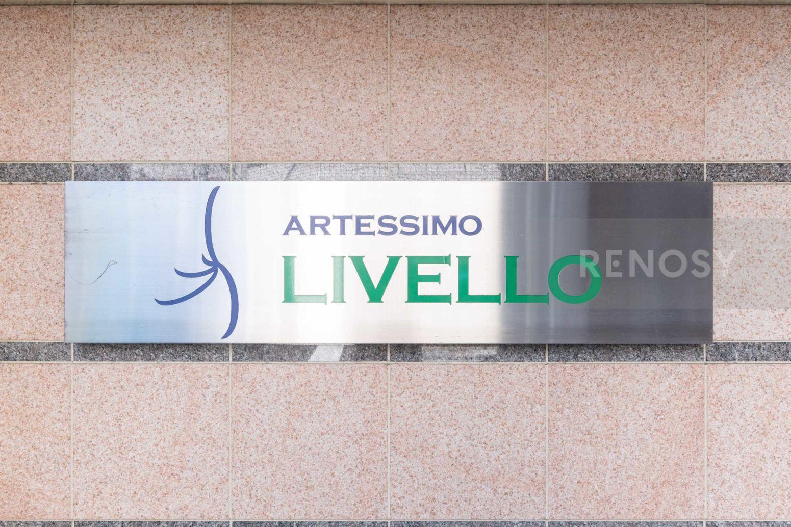 ARTESSIMO LIVELLO