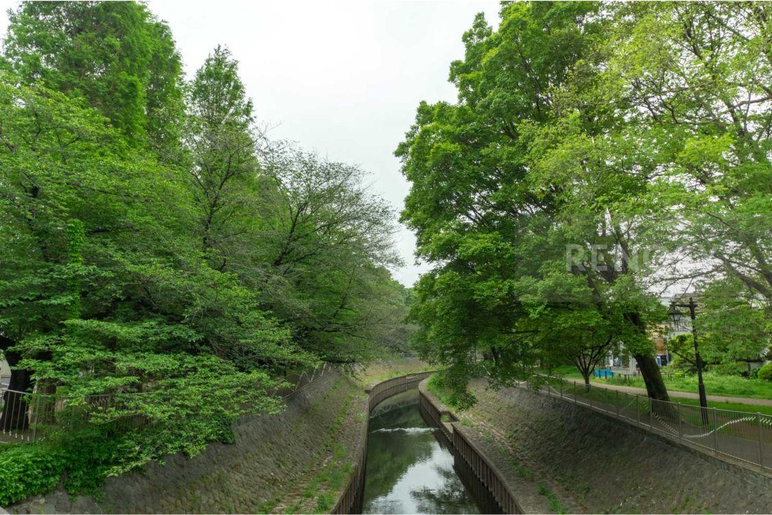LAYERSHOUSE杉並善福寺川公園
