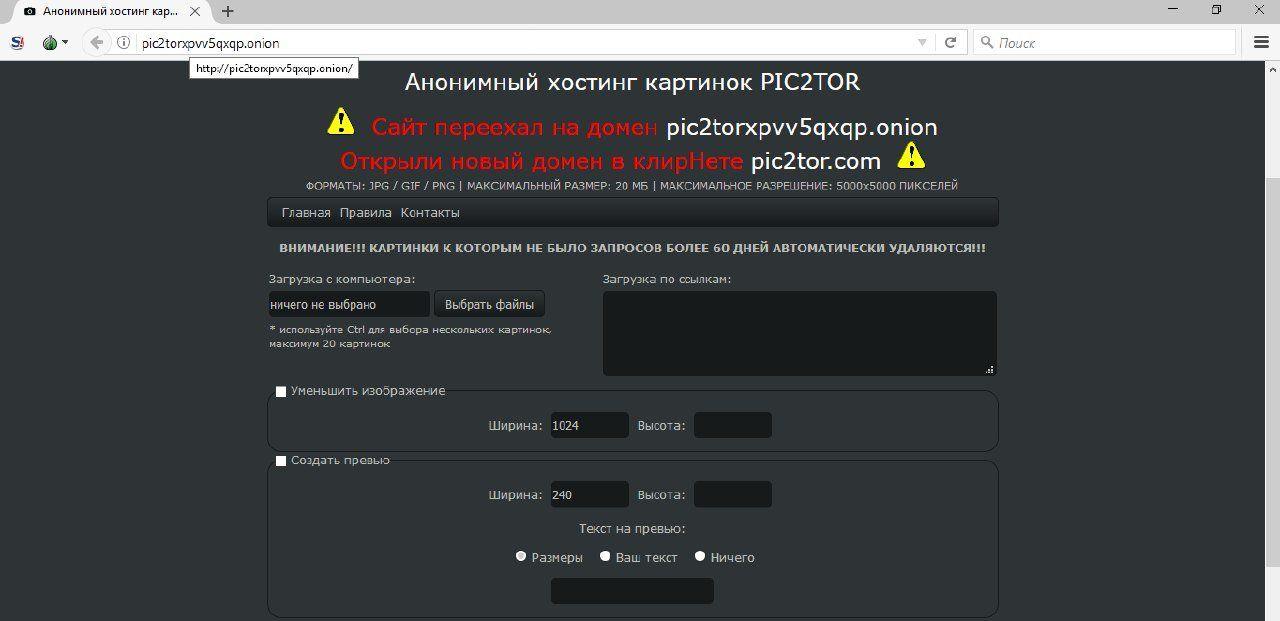 популЯрные форумы darknet gydra