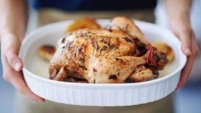 Chicken - Fat + Protein source