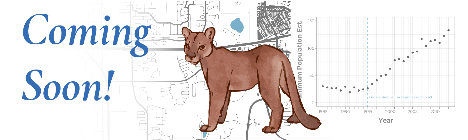 Coming Soon lesson graphic. A drawn cougar stands over a graph and a city map.