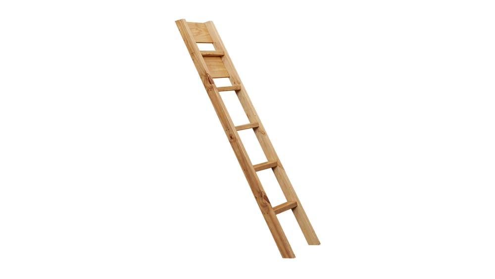 Turkey Creek Ladder