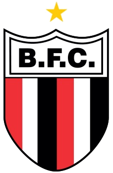 Botafogo de Ribeirão Preto/SP - 1986/1991