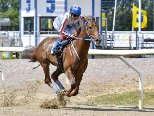 Sveriges snabbaste häst - och superloppet Pramms!