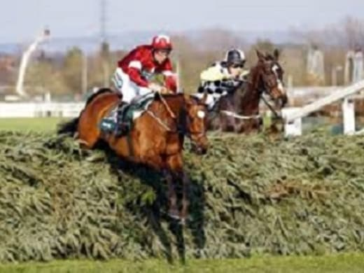 Elliott plays the numbers game in Grand National assault