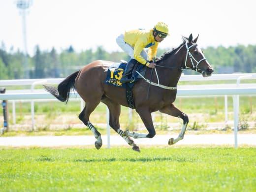 Lanwades Stud Stakes (L)  – stoeliten i en rafflande uppgörelse