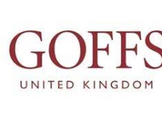 Katalogen till Goffs UK Breeze Up Sale i Doncaster...