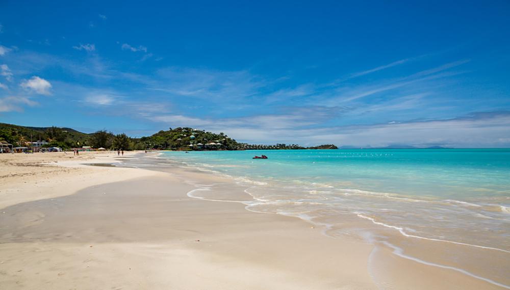 Antigua Starfish Jolly Beach
