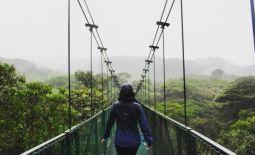 Hanging bridges in Monteverde