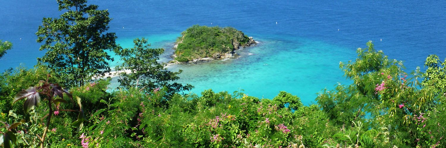 Study Abroad in US Virgin Islands
