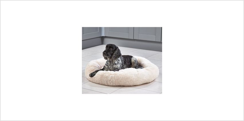 Sherpa Pet Bed from Studio