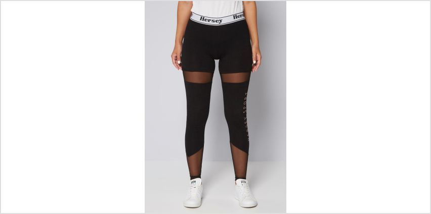 Beck and Hersey Kim Legging from Studio