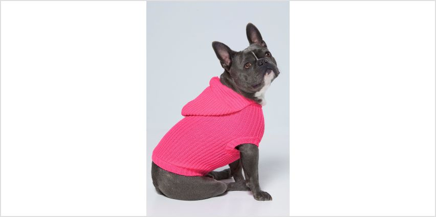 Neon Pink Hoody Dog Jumper from Studio