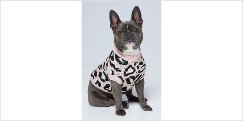 Pink Leopard Print Dog Jumper from Studio
