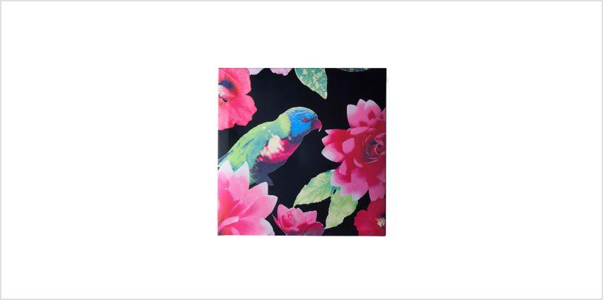 Tropical Garden Canvas from Studio