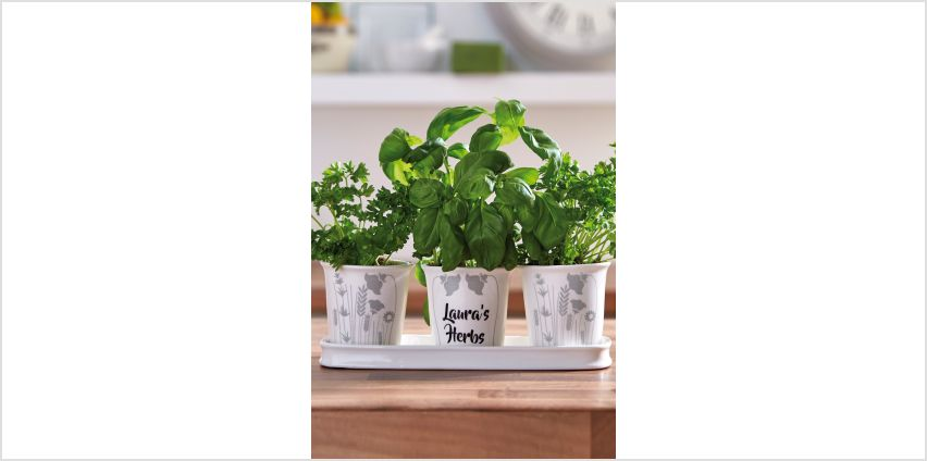 Personalised Table Top Planter from Studio