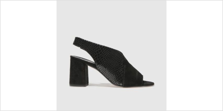 Schuh Black Allure Womens Low Heels from Schuh