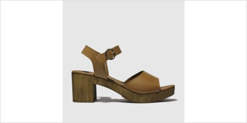 Schuh Tan Maine Womens Low Heels from Schuh