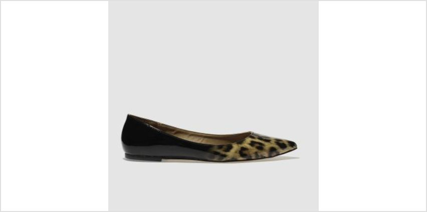 Schuh Black & Brown Elusive Womens Flats from Schuh