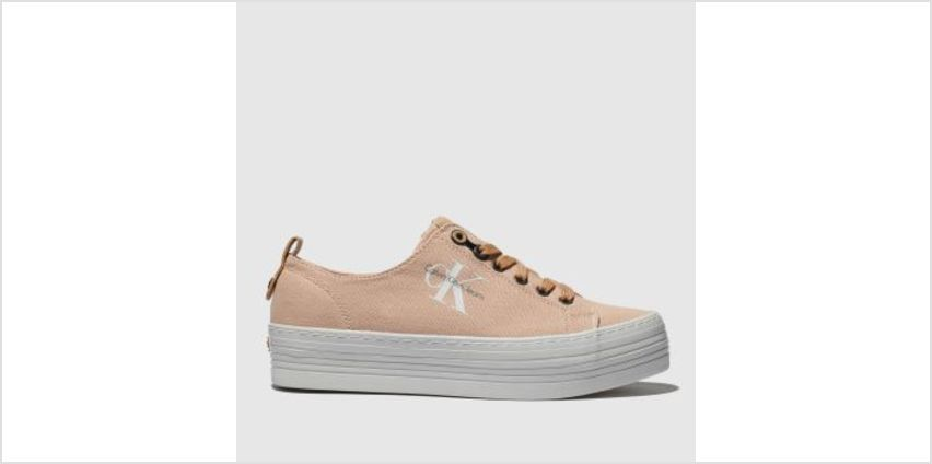 Calvin Klein Pink Jeans Zolah Canvas Womens Trainers from Schuh