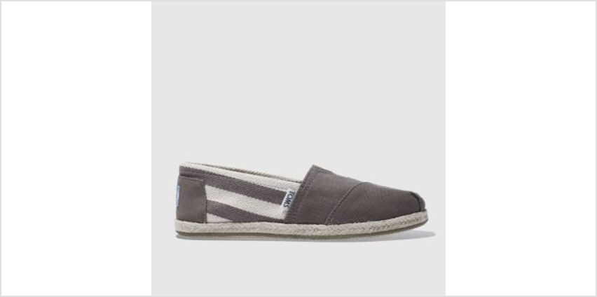Toms Grey University Classic Stripe Womens Flats from Schuh