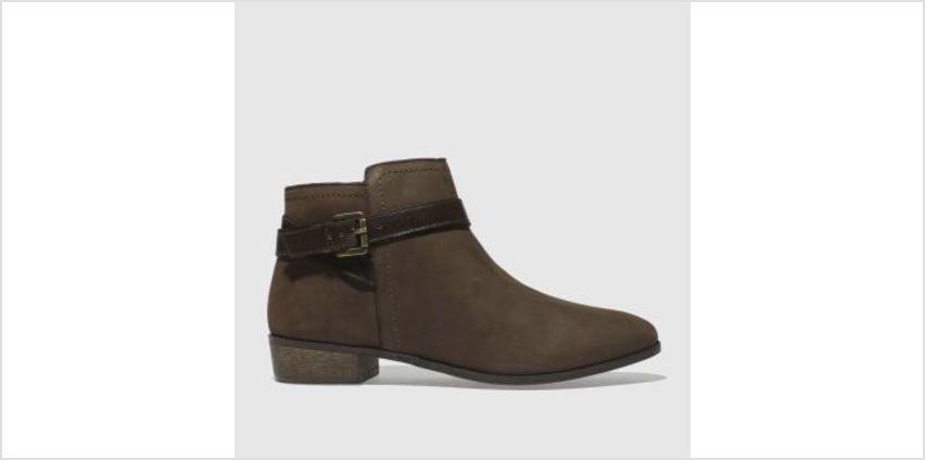 Schuh Brown Expedition Womens Boots from Schuh