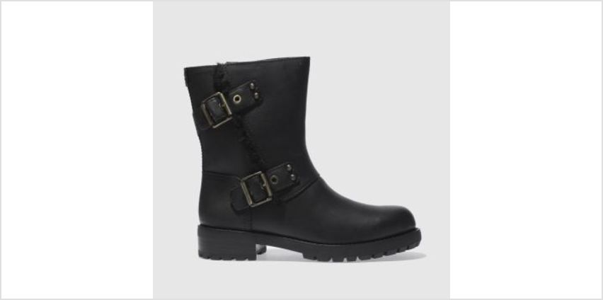 Ugg Black Niels Womens Boots from Schuh