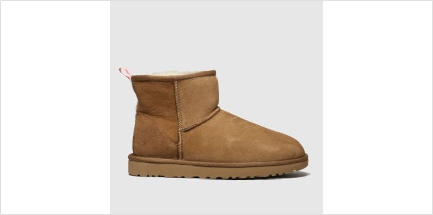 Ugg Tan Classic Mini Graphic Logo Womens Boots from Schuh