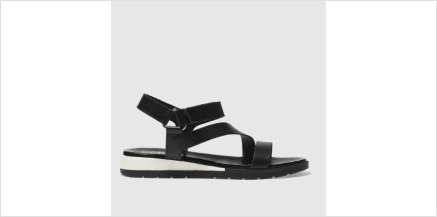 Schuh Black Malmo Womens Sandals from Schuh