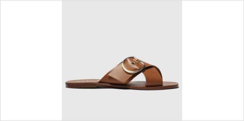 Schuh Tan Hong Kong Womens Sandals from Schuh