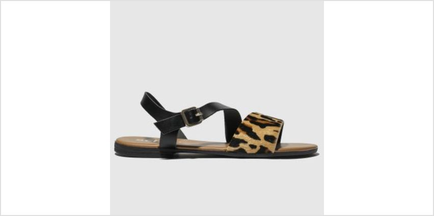 Schuh Black & Brown Venice Womens Sandals from Schuh