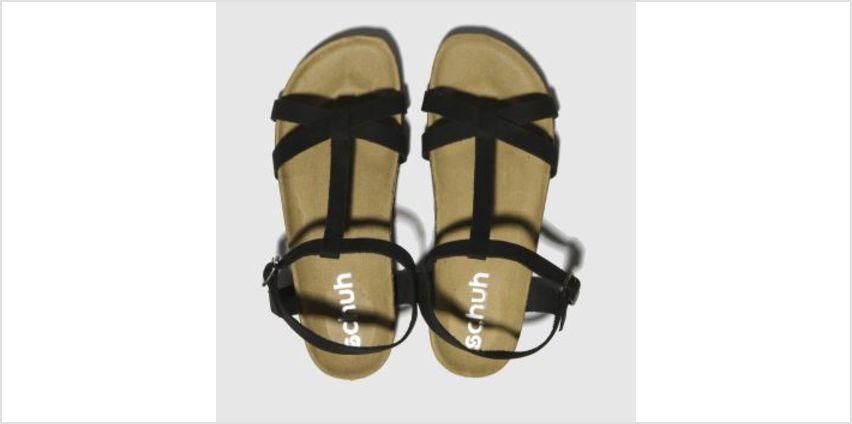 Schuh Black Cancun Womens Sandals from Schuh