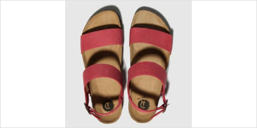 Red Or Dead Red Viscount Ii Womens Sandals from Schuh